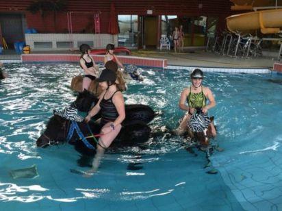 de-l-aquaponey-dans-une-piscine-du-calvados-1-15462-664-0